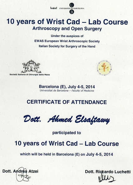 Certificate 10 years of wrist cad 2014