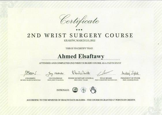2nd erist surery course 2012