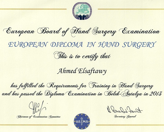Europen Board of Hand Surgery Examination 2013