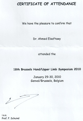 Hnad Upper Limb Symposium 2010